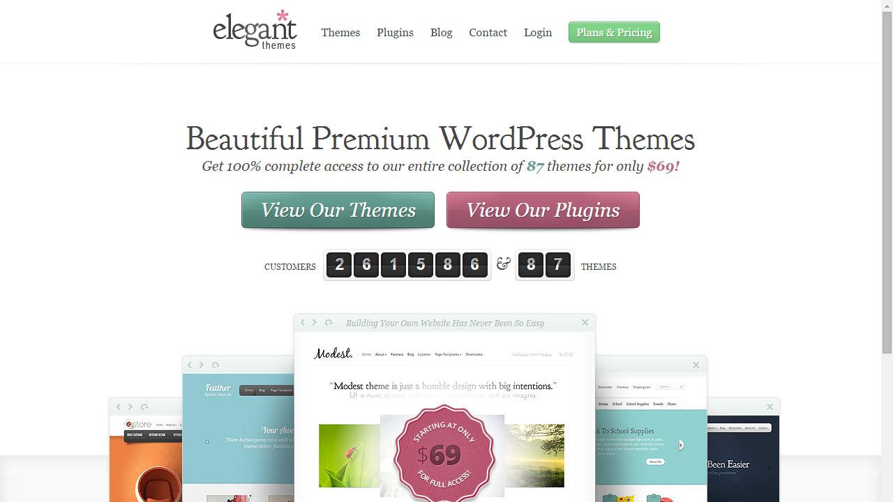 Como elegir tema para WordPress con Elegant Themes